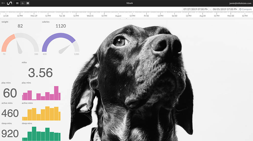 IoT Dashboard of Pet Health Data